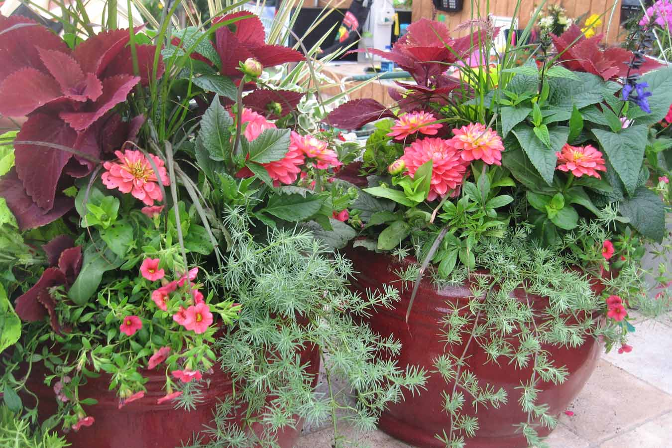 spring_container_3
