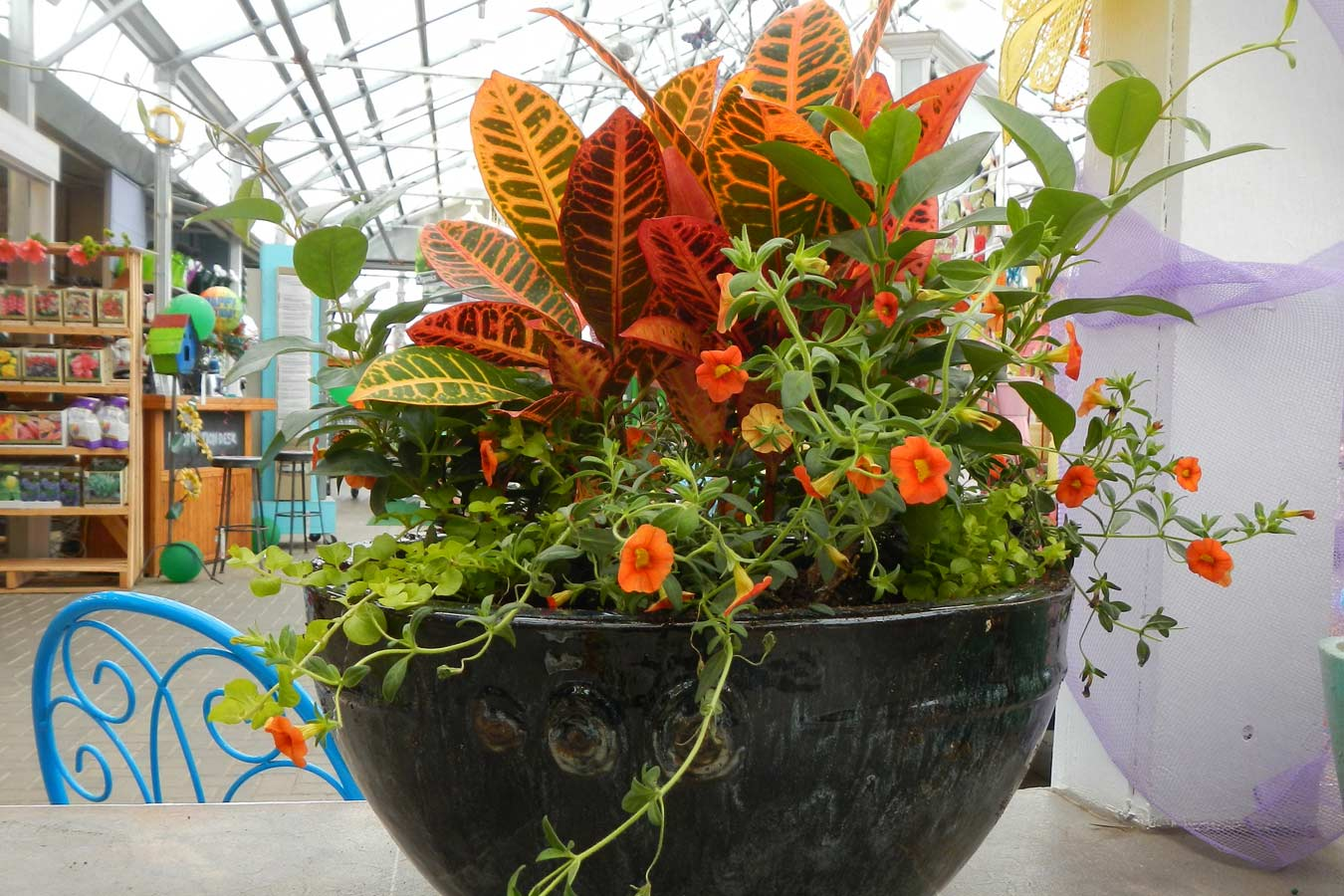 spring_container_5