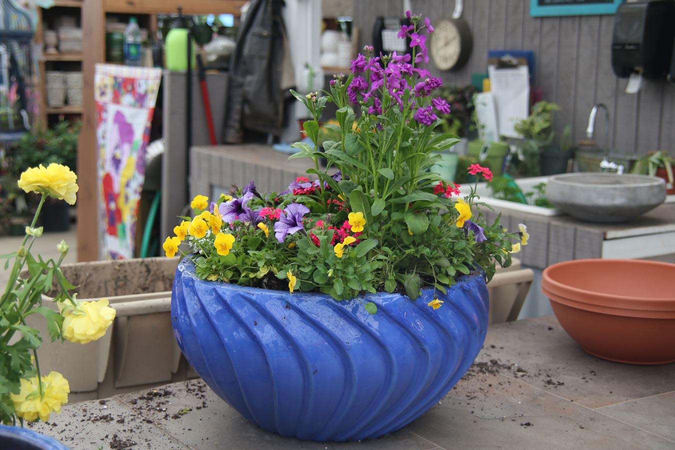 spring_container_6