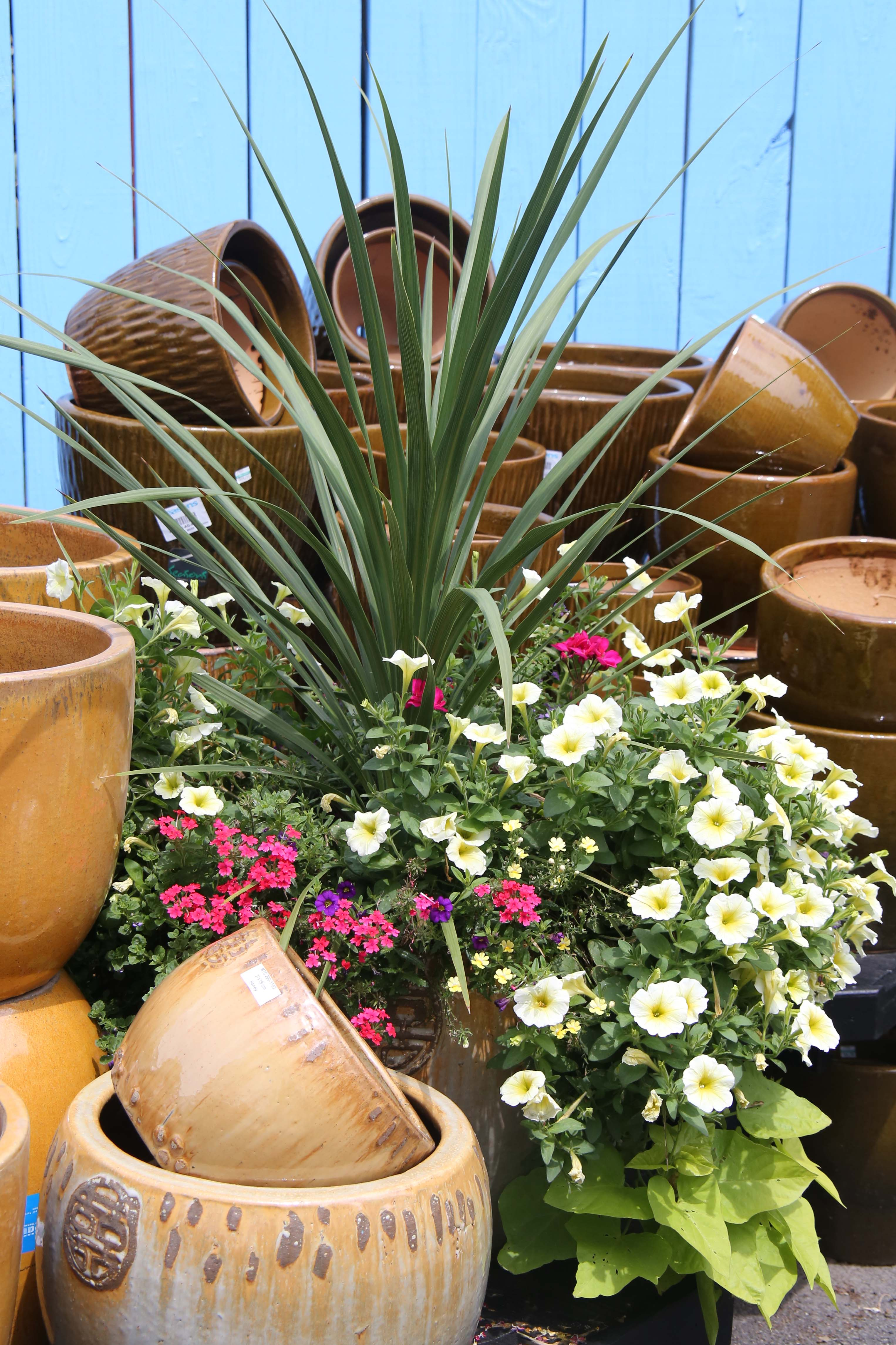spring_container_8