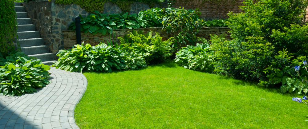 Luscious green yard installed with Pearl's Premium Lawn seed by Preston Greenhouse
